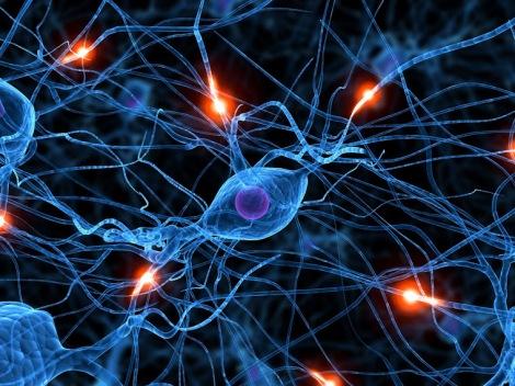 neurona_1